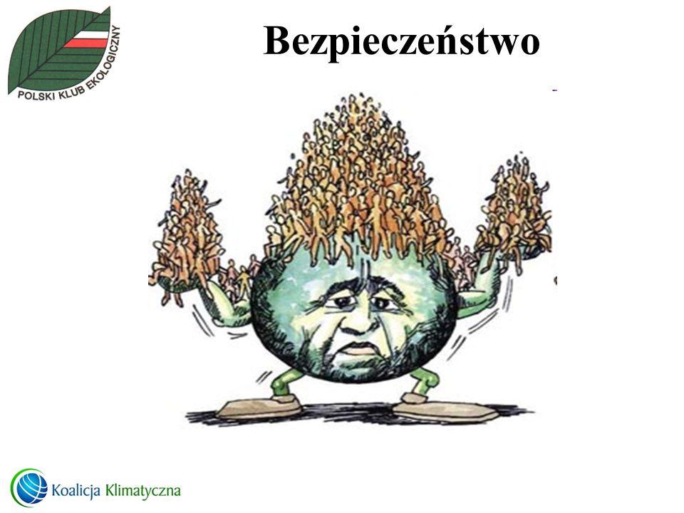 Energetyka w POLSCE Wnioski Stan jest katastrofalny – czy zabraknie nam energii Energetyka w Polsce musi przejść modernizację – ale czy mamy czas EFEKTYWNOŚĆ TO SZYBKI EFEKT