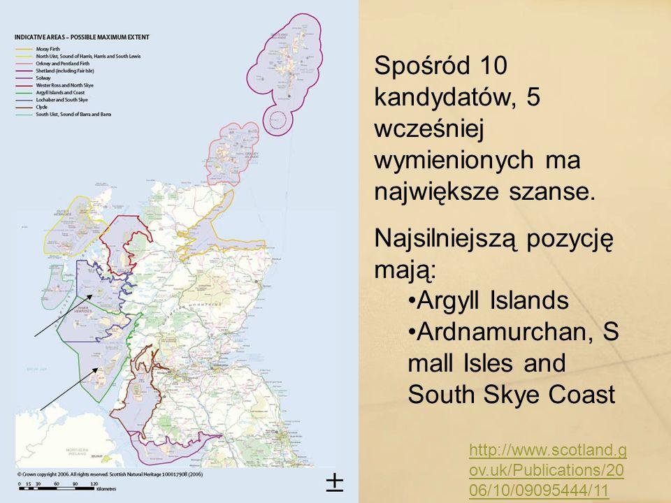 http://www.scotland.g ov.uk/Publications/20 06/10/09095444/11 Spośród 10 kandydatów, 5 wcześniej wymienionych ma największe szanse. Najsilniejszą pozy