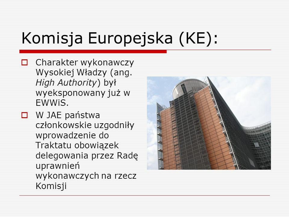 Komisja Europejska (KE): Charakter wykonawczy Wysokiej Władzy (ang. High Authority) był wyeksponowany już w EWWiS. W JAE państwa członkowskie uzgodnił