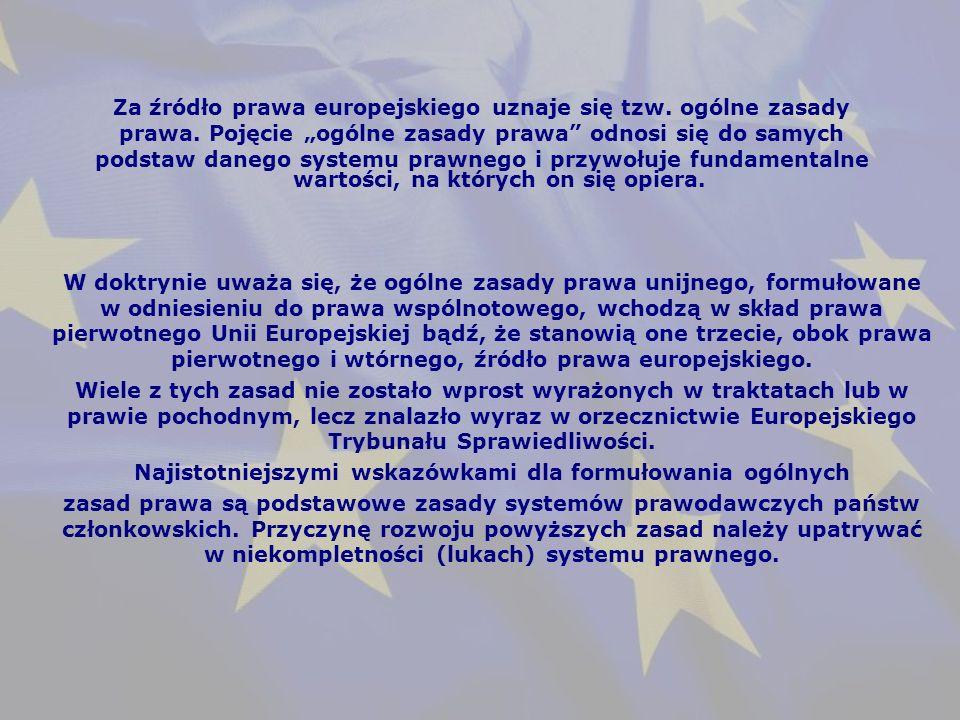 W doktrynie uważa się, że ogólne zasady prawa unijnego, formułowane w odniesieniu do prawa wspólnotowego, wchodzą w skład prawa pierwotnego Unii Europejskiej bądź, że stanowią one trzecie, obok prawa pierwotnego i wtórnego, źródło prawa europejskiego.