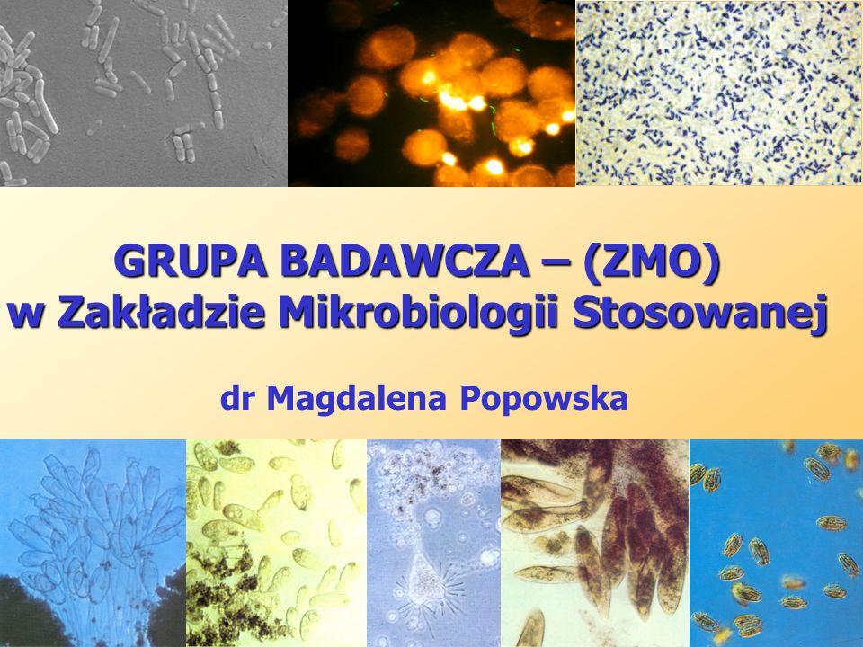 SKŁAD OSOBOWY ZESPÓŁ I prof.dr hab. Zdzisław Markiewicz (emeritus) dr Magdalena Popowska (p.