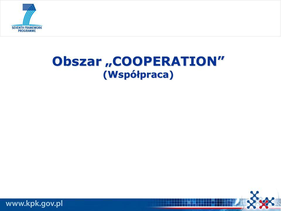 Obszar COOPERATION (Współpraca)