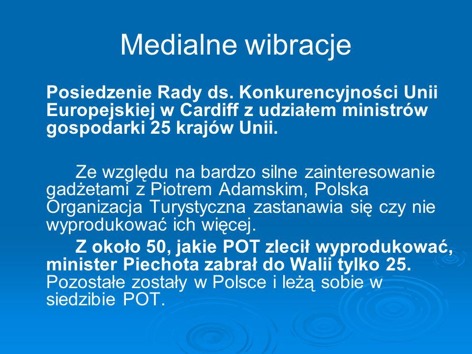 Medialne wibracje Posiedzenie Rady ds. Konkurencyjności Unii Europejskiej w Cardiff z udziałem ministrów gospodarki 25 krajów Unii. Ze względu na bard
