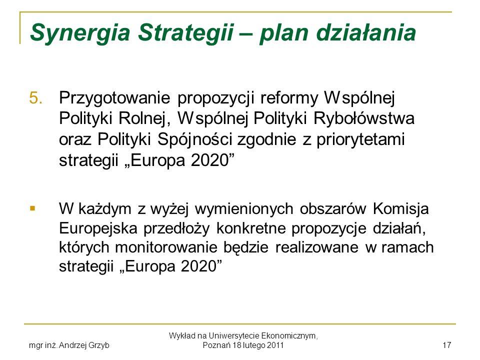 mgr inż. Andrzej Grzyb Wykład na Uniwersytecie Ekonomicznym, Poznań 18 lutego 2011 17 Synergia Strategii – plan działania 5. Przygotowanie propozycji