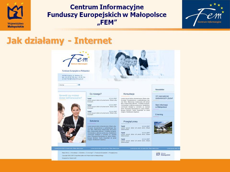 Centrum Informacyjne Funduszy Europejskich w Małopolsce FEM Jak działamy - Internet