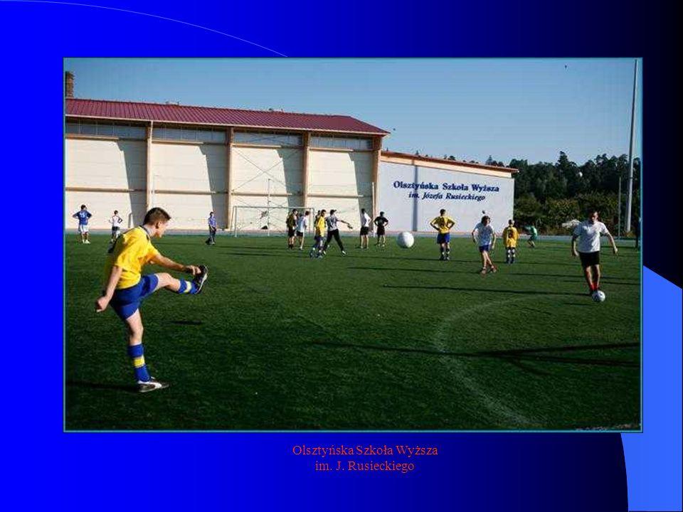 Innym ważnym elementem związanym z realizacją zadań sportowych w gminie, dzielnicy czy powiecie są działania tzw.