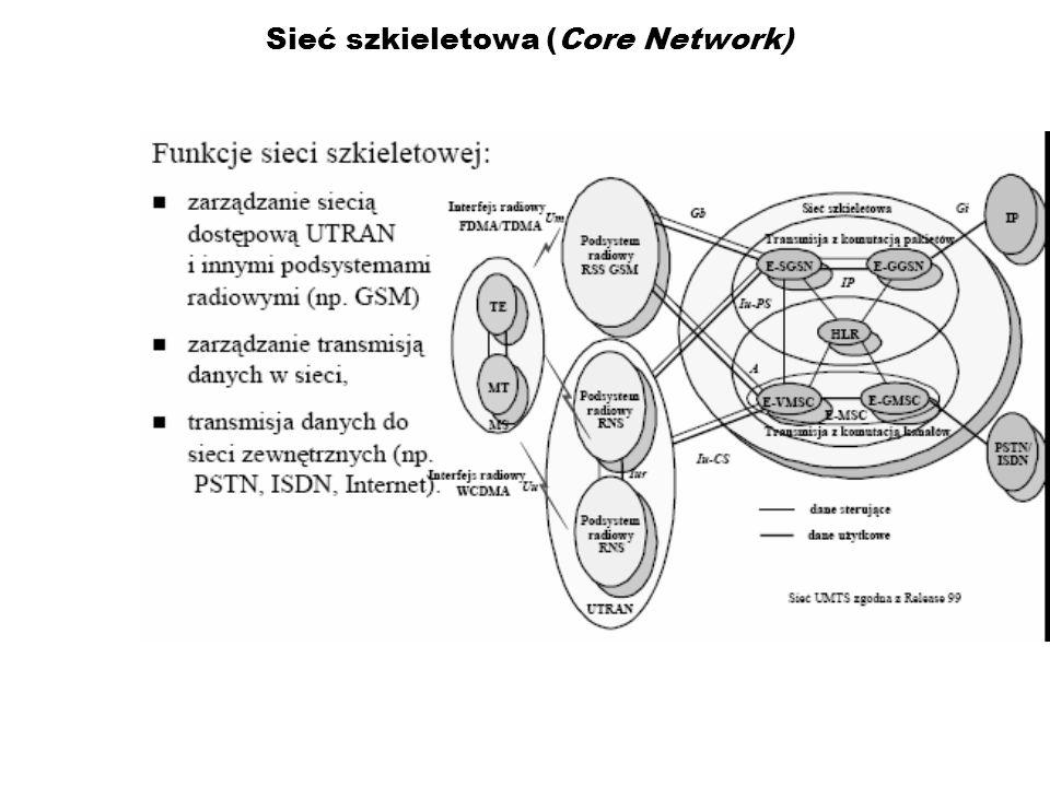 Sieć szkieletowa (Core Network)