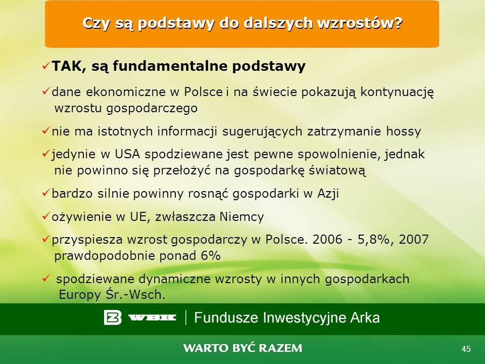 44 Warszawski Indeks Giełdowy - WIG 1991 - 2007