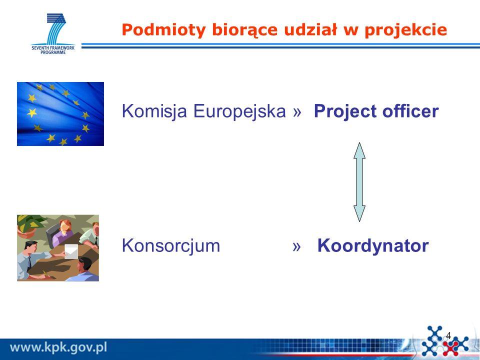 15 1.Doskonałość naukowa i technologiczna; 2.Jakość i efektywność realizacji oraz zarządzania; 3.Potencjalny efekt oddziaływania będącego wynikiem wykorzystania wyników projektu; Zgodność z celami programu (nie jest samodzielnym kryterium - zawiera się w kryteriach 1 i 3).