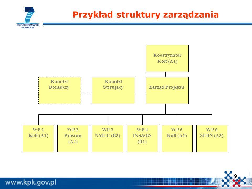 9 Przykład struktury zarządzania Komitet DoradczyZarząd Projektu Komitet Sterujący Koordynator Kolt (A1) WP 3 NMLC (B3) WP 4 INS&BS (B1) WP 2 Proscan