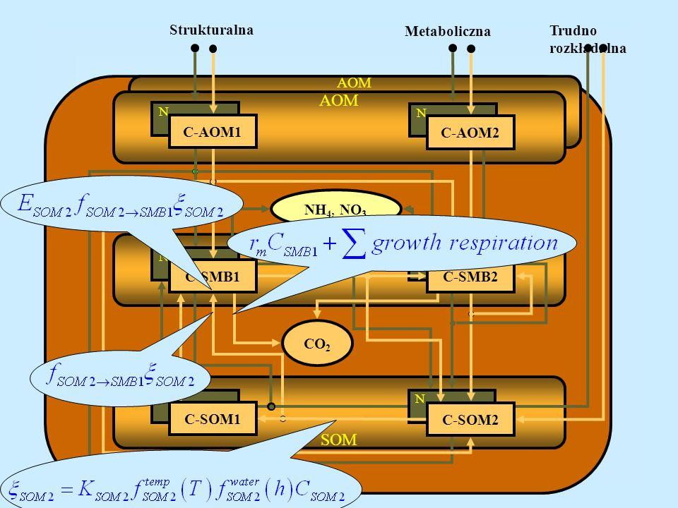 AOM SMB SOM N N C Trudno rozkładalna C C C N N C-AOM1 C-SOM1 C-SOM2 NN NH 4, NO 3 C-AOM2 CO 2 C-SMB2 Strukturalna Metaboliczna C-SMB1