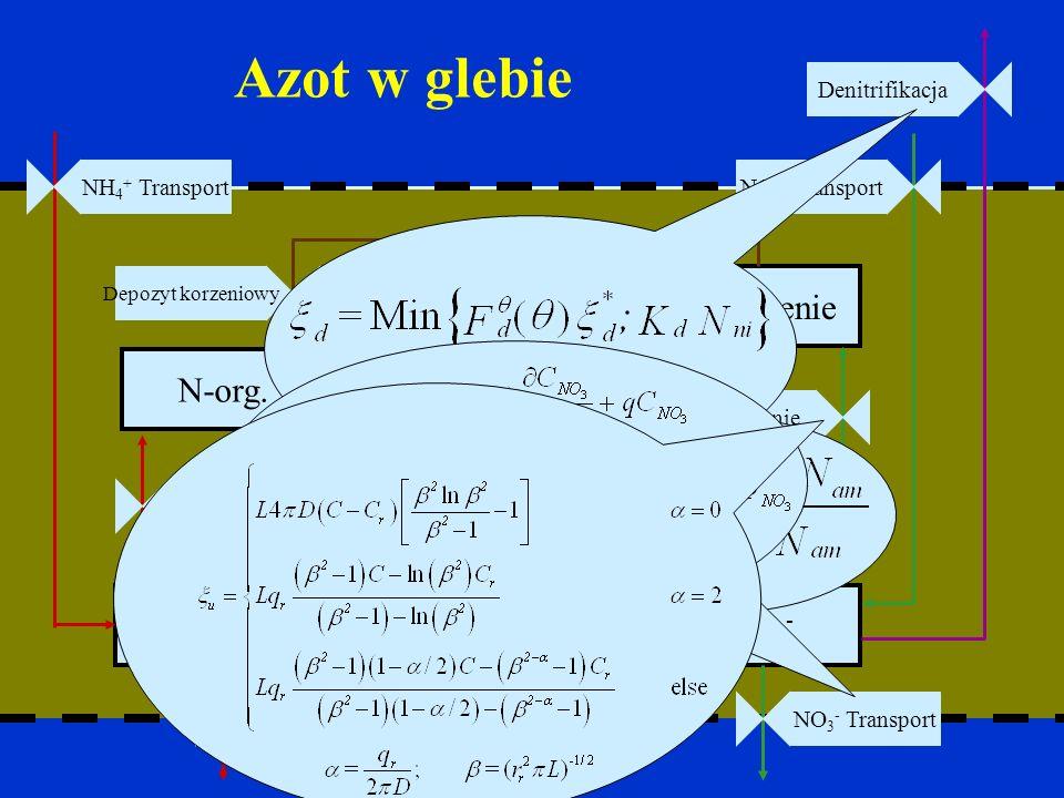 Azot w glebie NH 4 + NO 3 - Nitrifikacja N-org. N-korzenie Pobranie Immobil. NH 4 + TransportNO 3 - Transport Mineralizacja netto Pobranie NO 3 - Tran