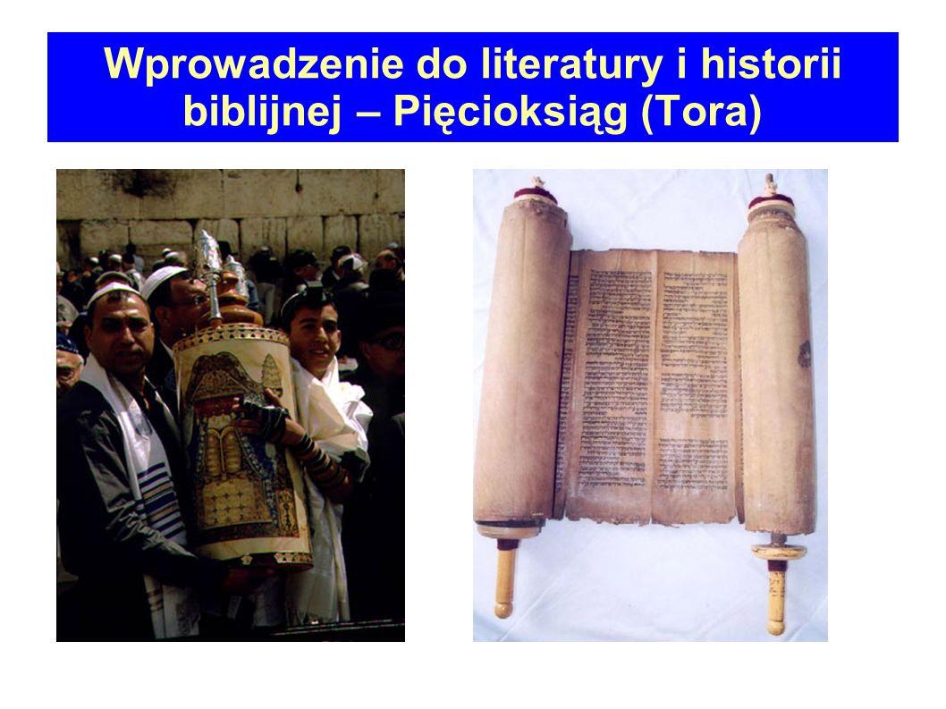 KRYTYKA TEKSTU (Textual criticism) Krytyka tekstualna poprzez porównywanie różnych, dostępnych manuskryptów stara się odsłonić tekst oryginalny.