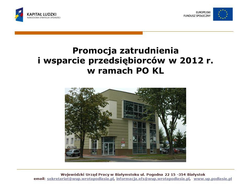 Projekty rynku pracy w ramach Działania 6.1 PO KL Projekty konkursowe (1 konkurs; alokacja 5 mln zł) Projekty systemowe (alokacja ok.