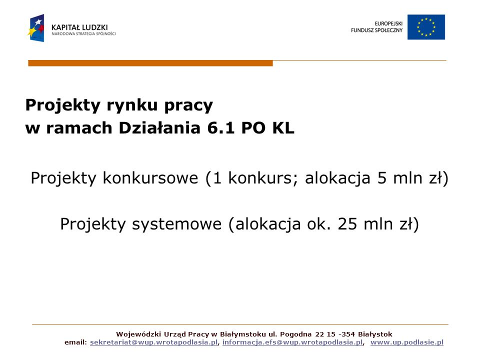 Projekty rynku pracy w ramach Działania 6.1 PO KL Projekty konkursowe (1 konkurs; alokacja 5 mln zł) Projekty systemowe (alokacja ok. 25 mln zł) Wojew