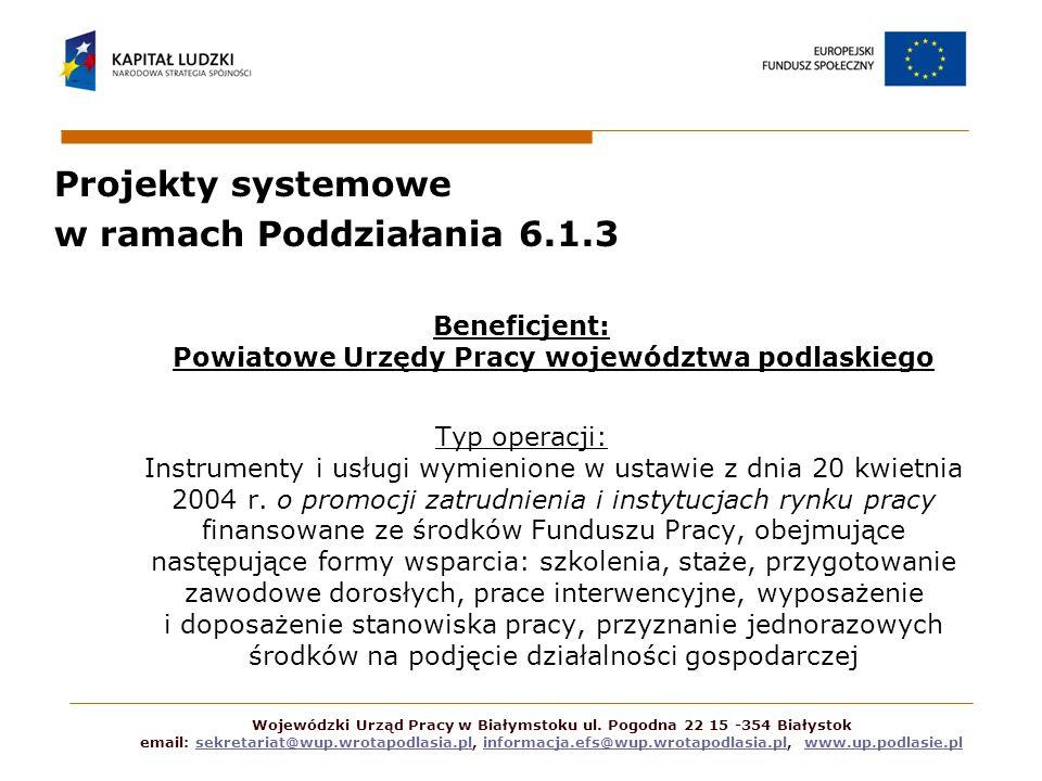 Projekty systemowe w ramach Poddziałania 6.1.3 Beneficjent: Powiatowe Urzędy Pracy województwa podlaskiego Typ operacji: Instrumenty i usługi wymienio