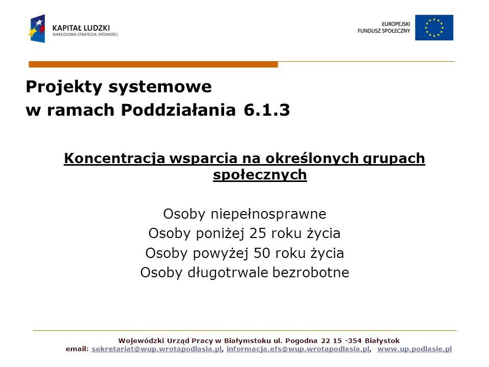 Projekty systemowe w ramach Poddziałania 6.1.3 Indywidualizacja wsparcia poprzez zastosowanie IPD Efektywność zatrudnieniowa (minimum 45%) Wojewódzki Urząd Pracy w Białymstoku ul.