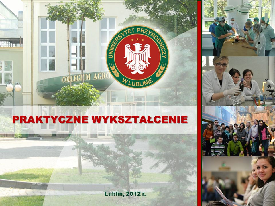 20-950 Lublin, ul.