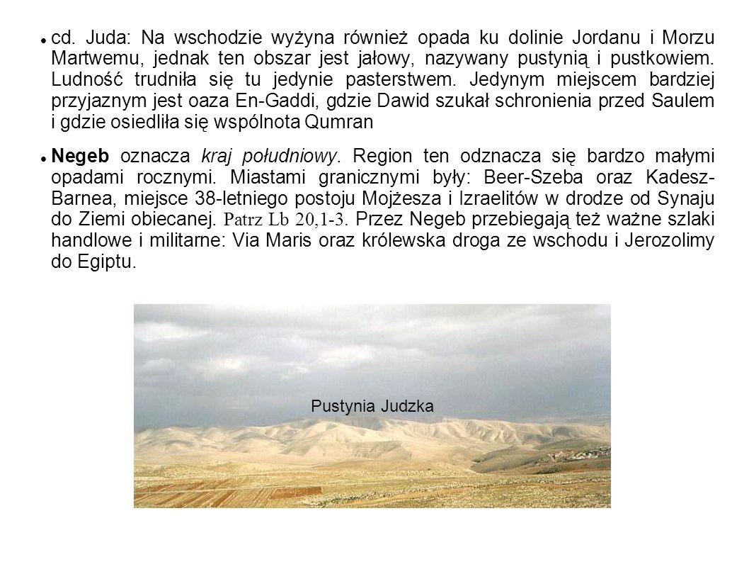 cd. Juda: Na wschodzie wyżyna również opada ku dolinie Jordanu i Morzu Martwemu, jednak ten obszar jest jałowy, nazywany pustynią i pustkowiem. Ludnoś