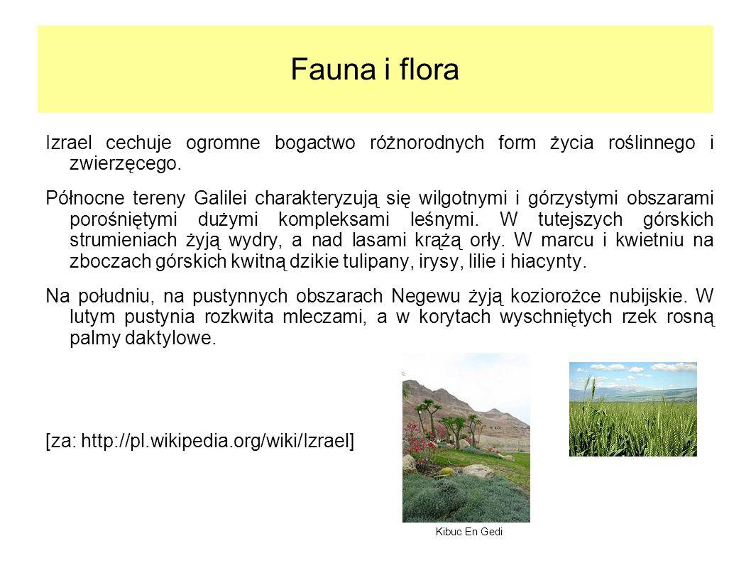Fauna i flora Izrael cechuje ogromne bogactwo różnorodnych form życia roślinnego i zwierzęcego. Północne tereny Galilei charakteryzują się wilgotnymi