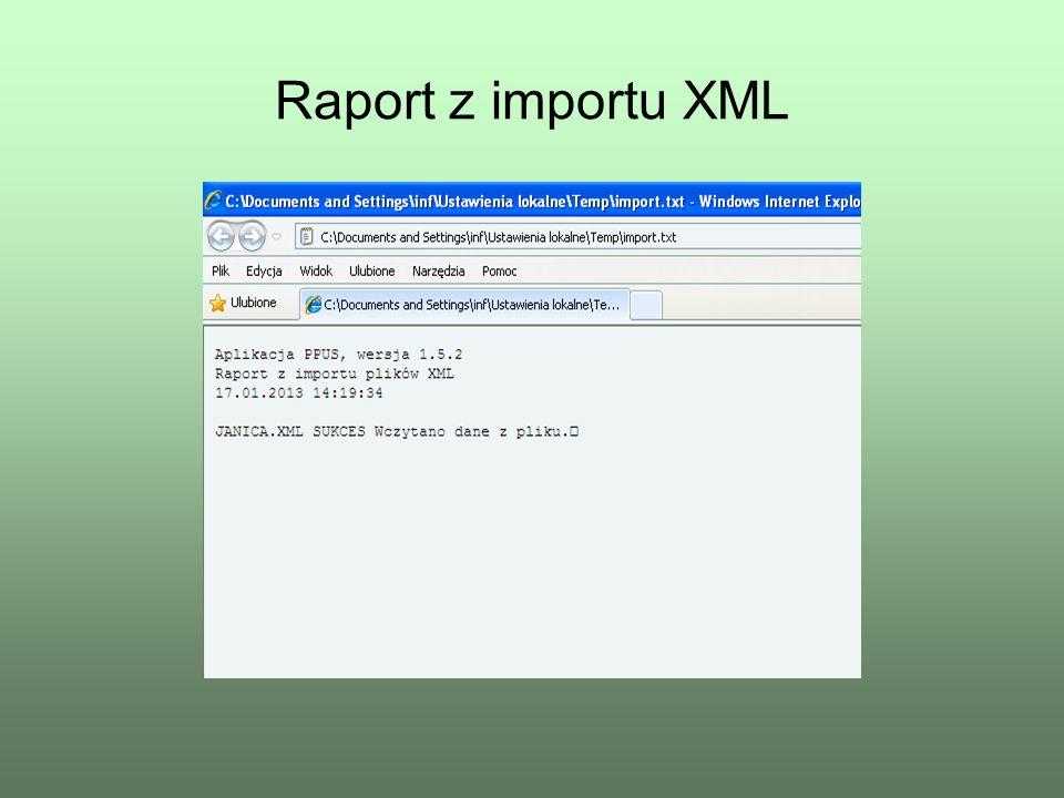 Raport z importu XML