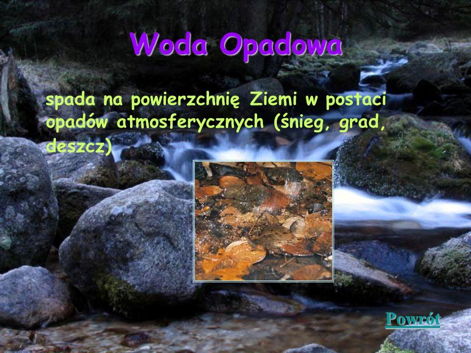 Woda Opadowa spada na powierzchnię Ziemi w postaci opadów atmosferycznych (śnieg, grad, deszcz) Powrót