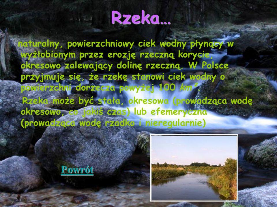 Rzeka… naturalny, powierzchniowy ciek wodny płynący w wyżłobionym przez erozję rzeczną korycie, okresowo zalewający dolinę rzeczną. W Polsce przyjmuje