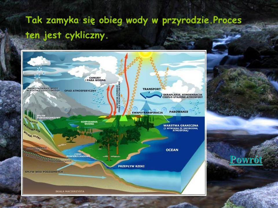 Tak zamyka się obieg wody w przyrodzie.Proces ten jest cykliczny. Powrót