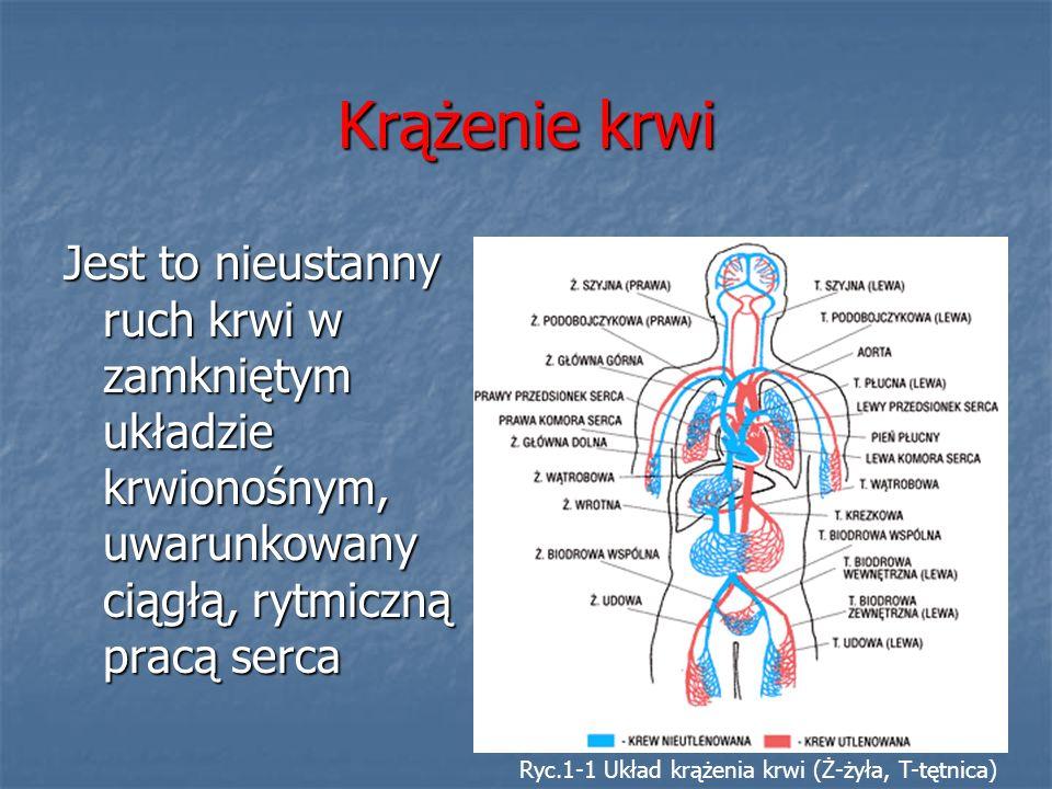 Krążenie krwi Jest to nieustanny ruch krwi w zamkniętym układzie krwionośnym, uwarunkowany ciągłą, rytmiczną pracą serca Ryc.1-1 Układ krążenia krwi (