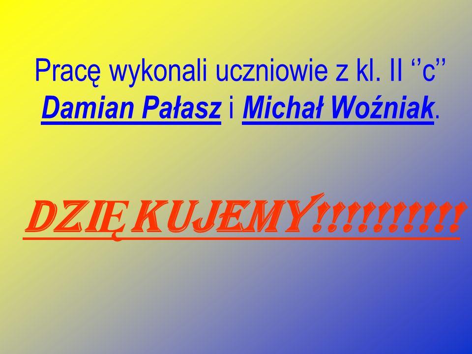Pracę wykonali uczniowie z kl. II c Damian Pałasz i Michał Woźniak. DZI Ę KUJEMY!!!!!!!!!!