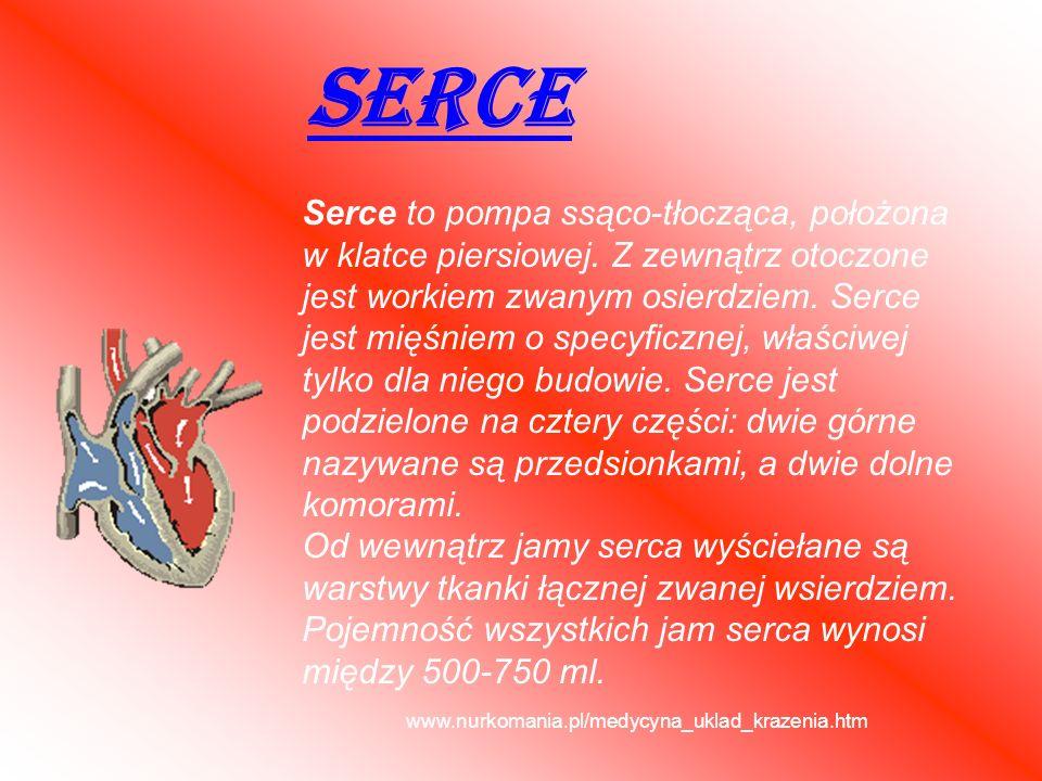 SERCE Serce to pompa ssąco-tłocząca, położona w klatce piersiowej. Z zewnątrz otoczone jest workiem zwanym osierdziem. Serce jest mięśniem o specyficz
