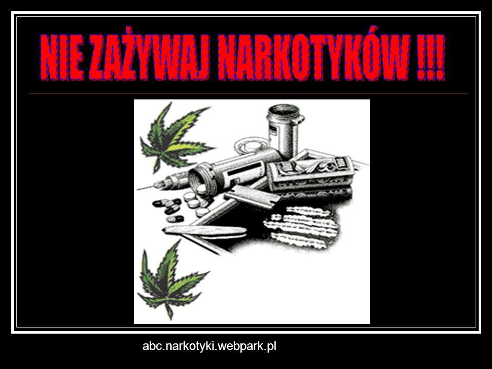 abc.narkotyki.webpark.pl