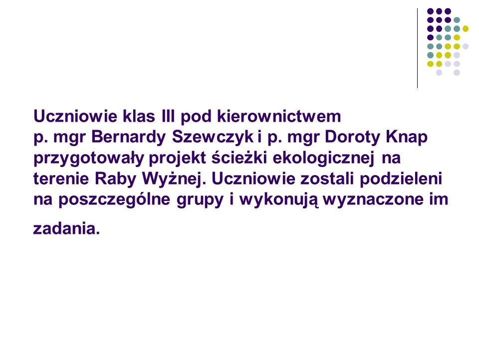 Uczniowie klas III pod kierownictwem p. mgr Bernardy Szewczyk i p. mgr Doroty Knap przygotowały projekt ścieżki ekologicznej na terenie Raby Wyżnej. U