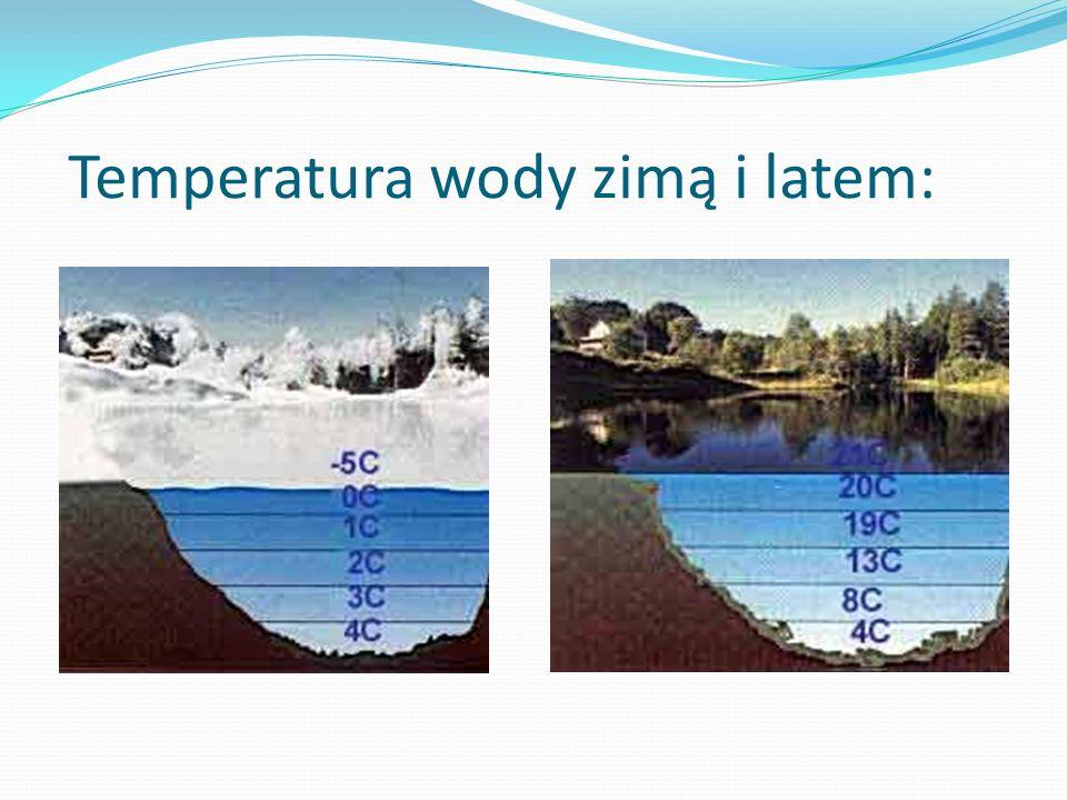 Temperatura wody zimą i latem: