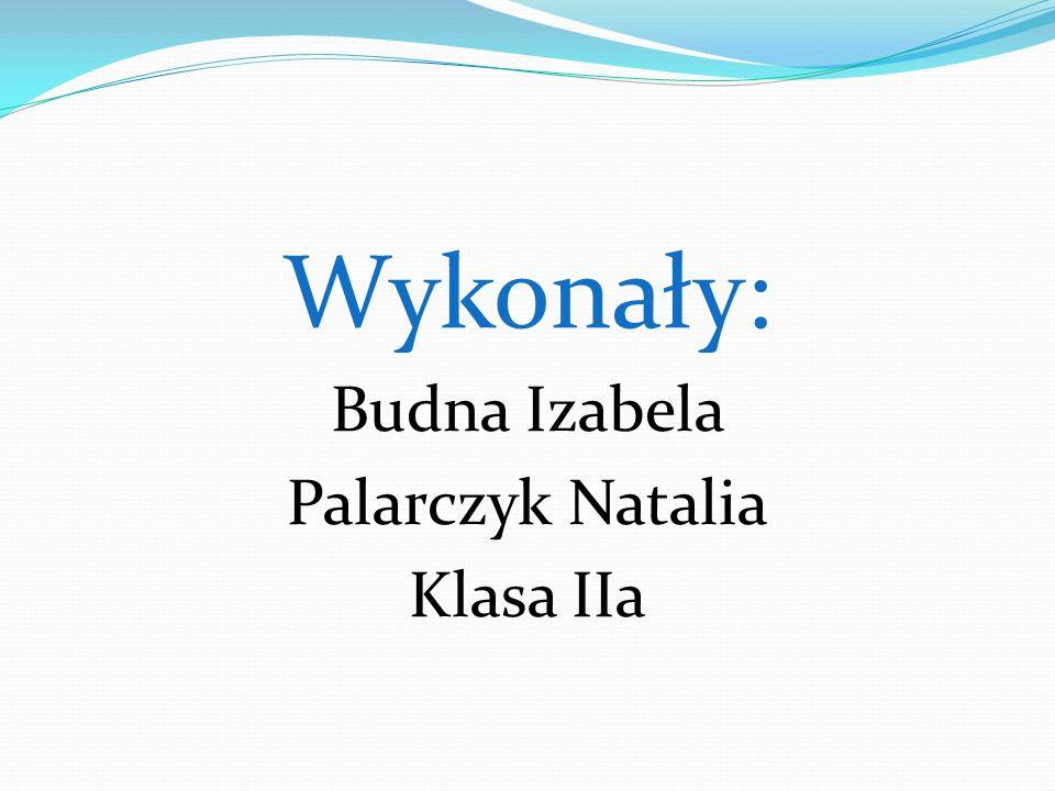 Wykonały: Budna Izabela Palarczyk Natalia Klasa IIa