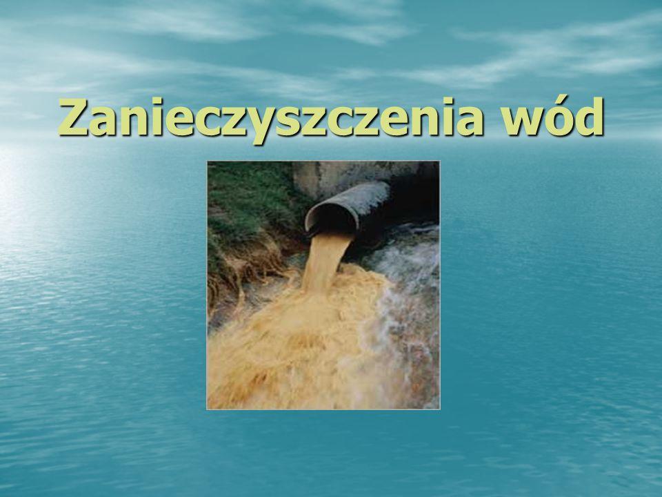 Zanieczyszczenia wód