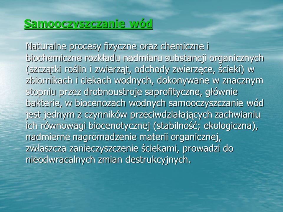 Samooczyszczanie wód Samooczyszczanie wód Naturalne procesy fizyczne oraz chemiczne i biochemiczne rozkładu nadmiaru substancji organicznych (szczątki roślin i zwierząt, odchody zwierzęce, ścieki) w zbiornikach i ciekach wodnych, dokonywane w znacznym stopniu przez drobnoustroje saprofityczne, głównie bakterie, w biocenozach wodnych samooczyszczanie wód jest jednym z czynników przeciwdziałających zachwianiu ich równowagi biocenotycznej (stabilność; ekologiczna), nadmierne nagromadzenie materii organicznej, zwłaszcza zanieczyszczenie ściekami, prowadzi do nieodwracalnych zmian destrukcyjnych.