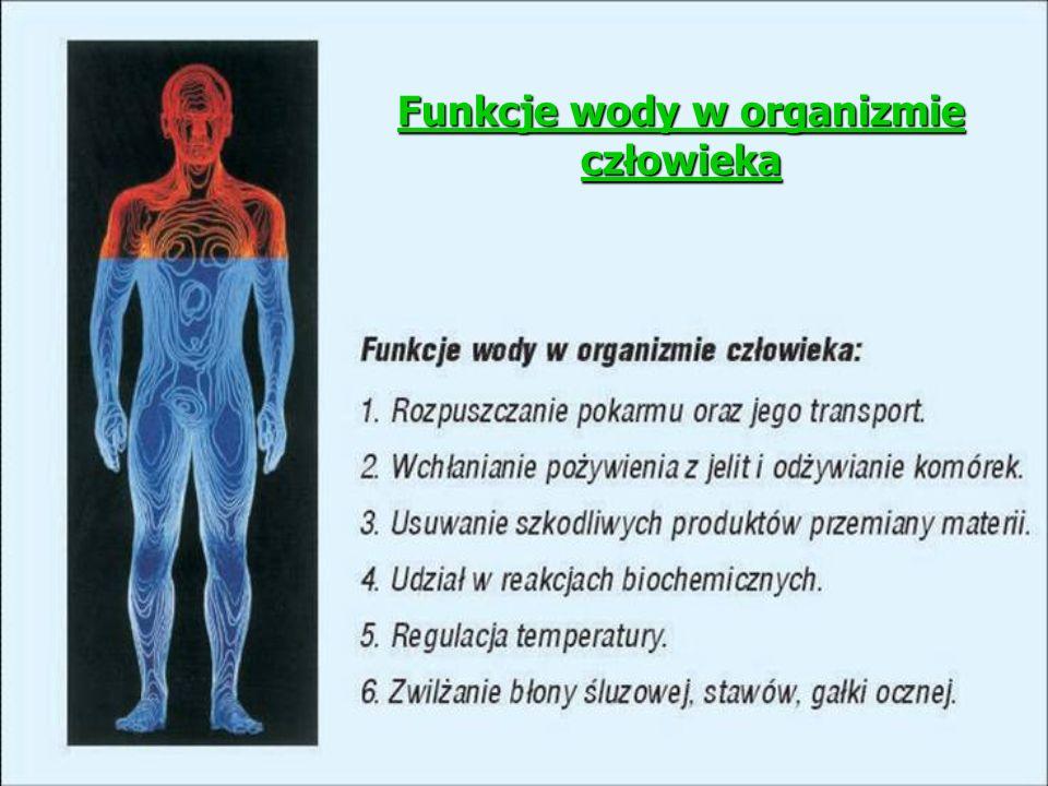 Funkcje wody w organizmie człowieka Funkcje wody w organizmie człowieka