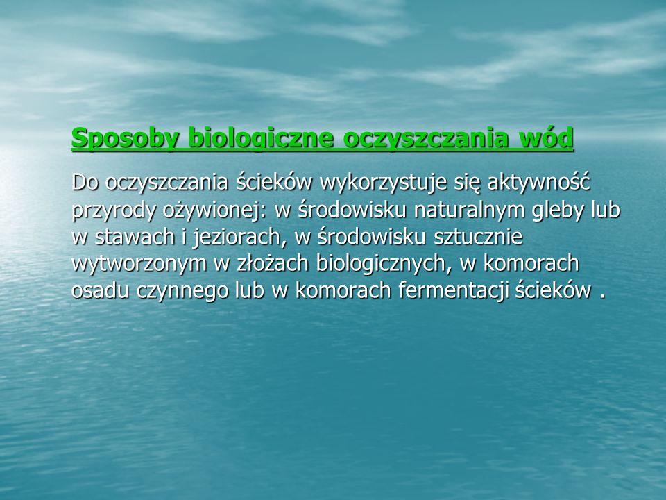 Sposoby biologiczne oczyszczania wód Sposoby biologiczne oczyszczania wód Do oczyszczania ścieków wykorzystuje się aktywność przyrody ożywionej: w środowisku naturalnym gleby lub w stawach i jeziorach, w środowisku sztucznie wytworzonym w złożach biologicznych, w komorach osadu czynnego lub w komorach fermentacji ścieków.