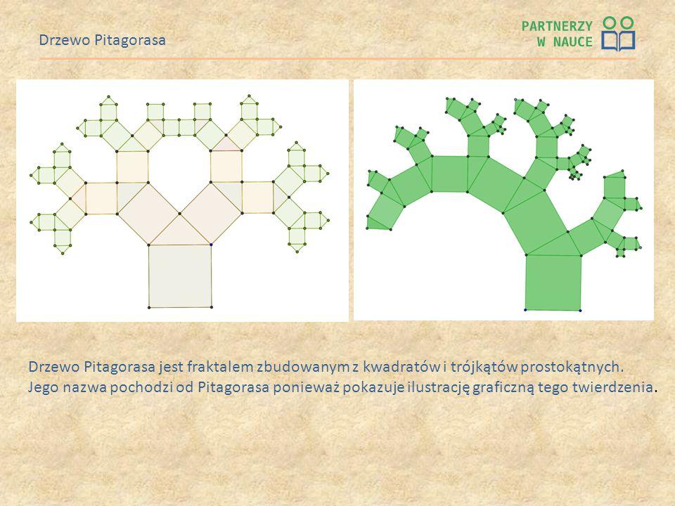Drzewo Pitagorasa Drzewo Pitagorasa jest fraktalem zbudowanym z kwadratów i trójkątów prostokątnych. Jego nazwa pochodzi od Pitagorasa ponieważ pokazu