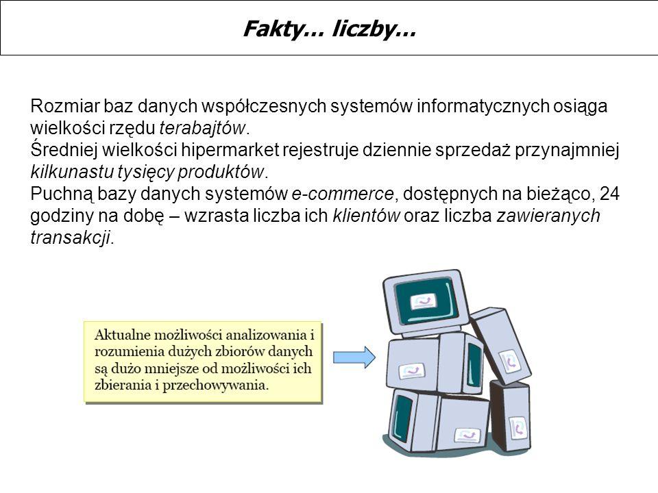 Rozmiar baz danych współczesnych systemów informatycznych osiąga wielkości rzędu terabajtów. Średniej wielkości hipermarket rejestruje dziennie sprzed