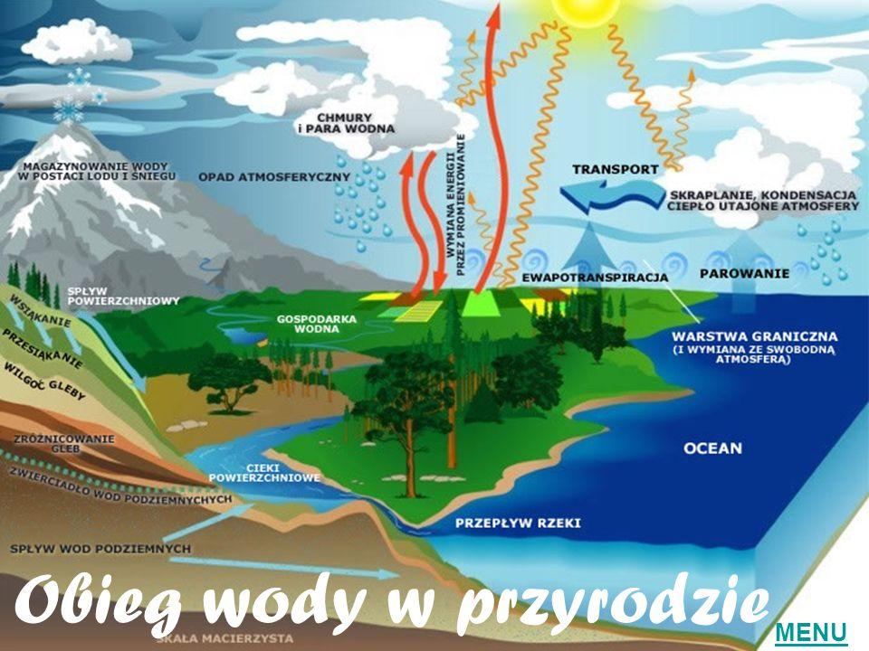 Obieg wody w przyrodzie MENU
