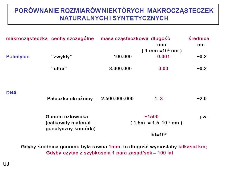 PORÓWNANIE ROZMIARÓW NIEKTÓRYCH MAKROCZĄSTECZEK NATURALNYCH I SYNTETYCZNYCH makrocząsteczkacechy szczególne masa cząsteczkowa długość średnica mm nm (