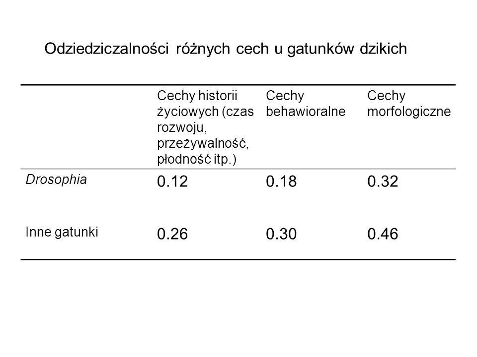 Cechy historii życiowych (czas rozwoju, przeżywalność, płodność itp.) Cechy behawioralne Cechy morfologiczne Drosophia 0.120.180.32 Inne gatunki 0.260