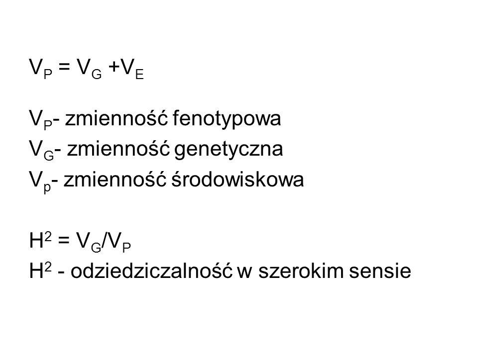 V P = V G +V E V P - zmienność fenotypowa V G - zmienność genetyczna V p - zmienność środowiskowa H 2 = V G /V P H 2 - odziedziczalność w szerokim sen