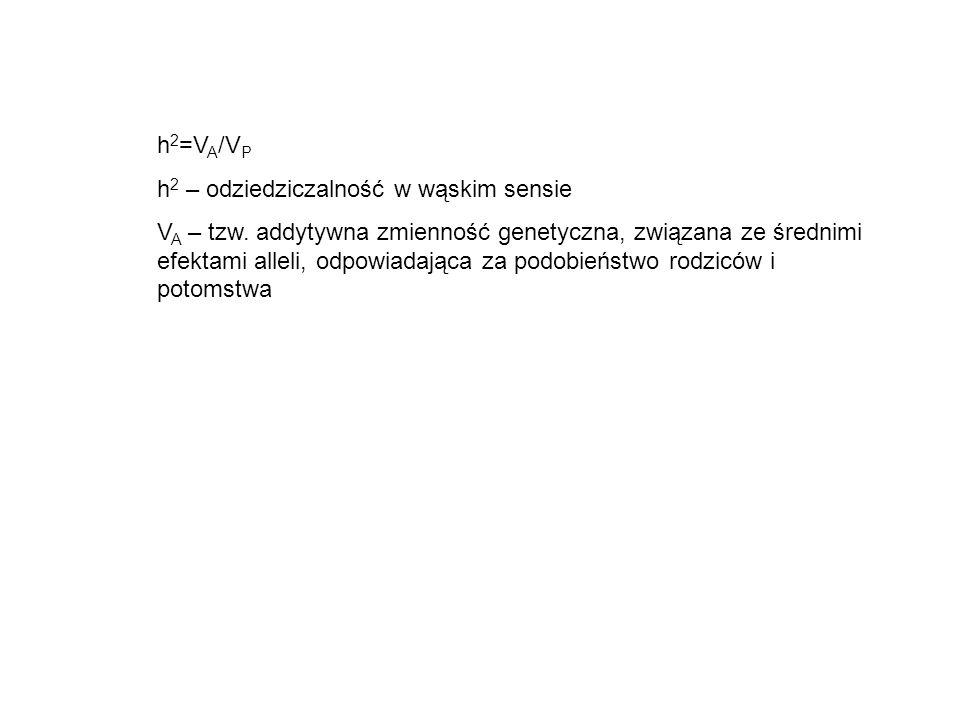 h 2 =V A /V P h 2 – odziedziczalność w wąskim sensie V A – tzw. addytywna zmienność genetyczna, związana ze średnimi efektami alleli, odpowiadająca za