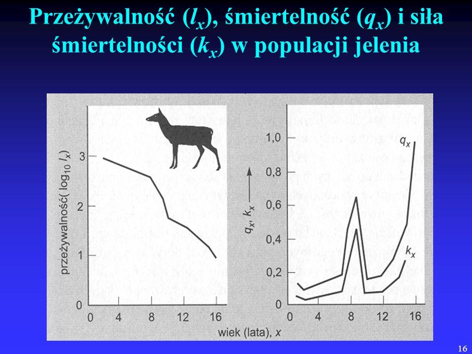 16 Przeżywalność (l x ), śmiertelność (q x ) i siła śmiertelności (k x ) w populacji jelenia