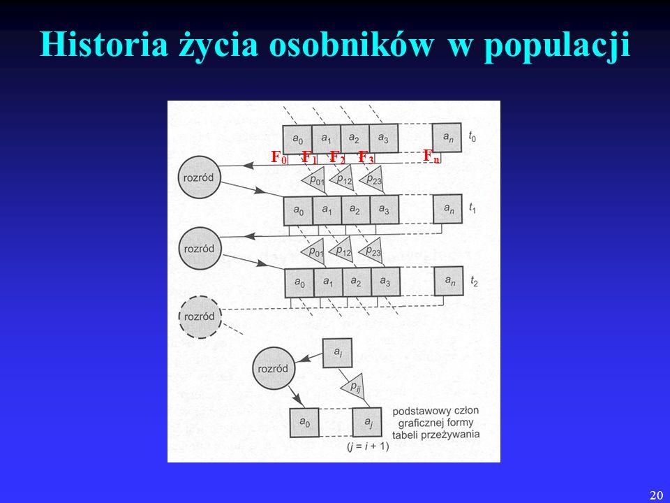 20 Historia życia osobników w populacji F0F0 F1F1 F2F2 F3F3 FnFn