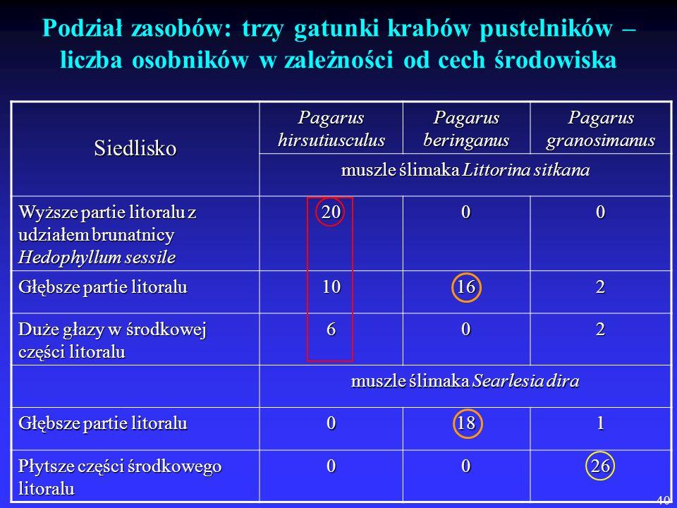 40 Podział zasobów: trzy gatunki krabów pustelników – liczba osobników w zależności od cech środowiska Siedlisko Pagarus hirsutiusculus Pagarus bering