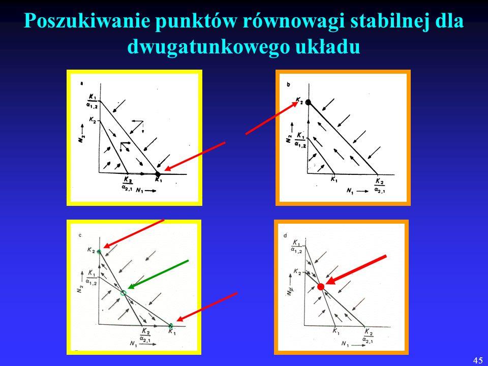 45 Poszukiwanie punktów równowagi stabilnej dla dwugatunkowego układu